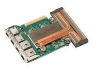 Dell Netzwerkadapter / Schnittstellen 540-BBVD 1